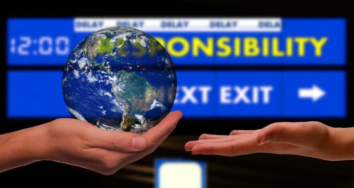 International organisations and environmental sustainability: the intricate partnership of the millennium